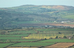 Tregonning Hill as seen from Trencrom Hill