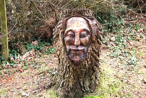 A funny man in the woods